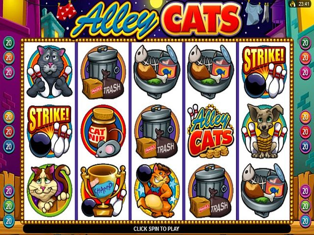 Alley Cats Spielautomat
